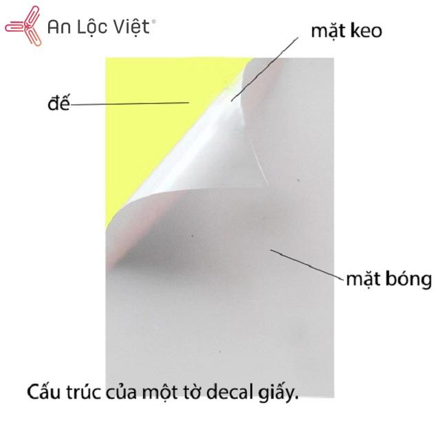 các thành phần trong giấy decal hiện có