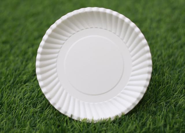đĩa giấy tiện dụng cho các bữa tiệc đông người