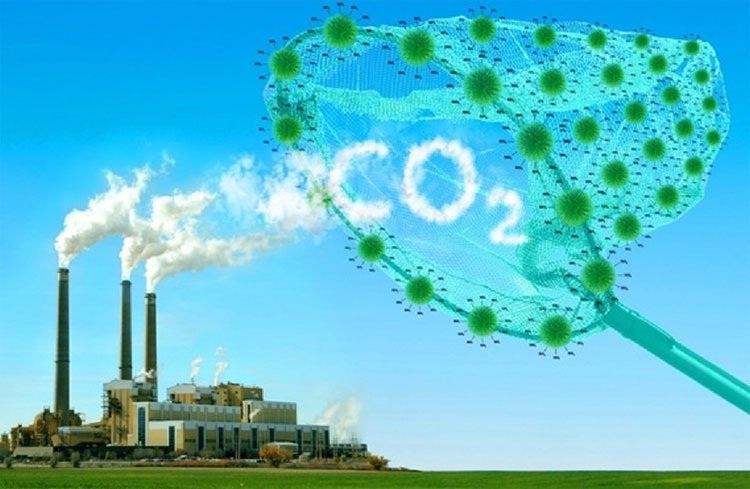 lợi ích giảm CO2 của giấy tái chế